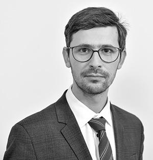 Vlad Stan - avocat consultant si pledant